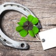 Horseshoe and four leaf clover — Stock Photo #57895525