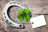 Horseshoe and four leaf clover — Stock Photo