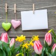 Message and hearts on the clothesline with spring flowers — Stock Photo #64303231