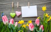 Message and hearts on the clothesline with spring flowers — Foto de Stock