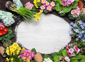 Gardening — Zdjęcie stockowe