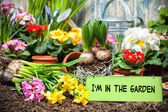 I am in the garden sign — Stock Photo