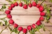 Frame of fresh roses — Stock Photo
