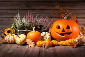 Autumn still life with Halloween pumpkins — Stock Photo