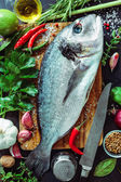 Fresh Gilt-head bream with spices and seasoning — Stock Photo