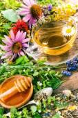Kruiden thee met honing — Stockfoto