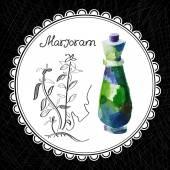 Marjoram — Stock Vector