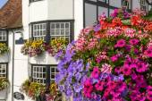 Blossoming flowers and old houses, Henley on Thames — Stock Photo