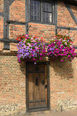 Blossoming flowers on medieval wattle house, Henley on Thames  — Stock Photo