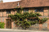 Climbing rose and wattle house, Henley on Thames  — Stock Photo