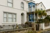 Palm-tree and cottages at St. Mawes, Cornwall — Stock Photo