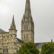 Cathedral bell-tower , Salisbury — Stock Photo #61907991