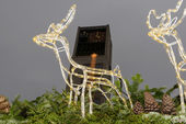 Town Hall and  light reindeer on stall roof at Xmas market time — Stock Photo
