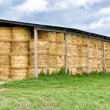 Hay bale stacked in barn — Foto de Stock