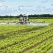 Tractor spraying pesticides on a field — Stock Photo #51911807