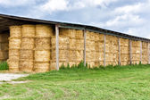 Hay bale stacked in barn — Stock Photo