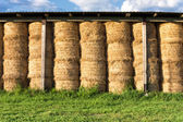 Haystacks in barn at the agricultural farm — Stock Photo