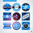 Set of labels and badges — Stock Vector #67347745