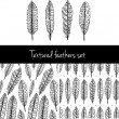 Doodle textured feathers — Stock Vector #54471809