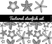 Doodle starfish and seamless pattern — Vector de stock