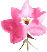 Vector watercolor flower — Stock Vector