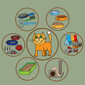 Infographics. Domestic cats and all that is necessary for the maintenance and care. — Stock Vector