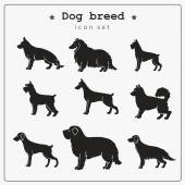 Set of dog breed icons — Stock Vector