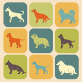 Set of stylized colored  icons of dog breeds — Stock Vector