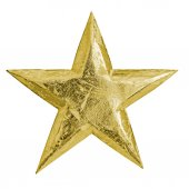 Golden metal christmas star — Stock Photo