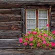 Window and flowers of mountain hut in Switzerland — Stock Photo #76173451