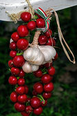 Tomatoes and garlic tied in a cluster — Stock Photo