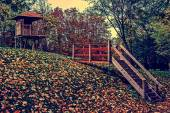 Vintage look on beginning of autumn in a park — Stock Photo