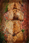 Background with detail of old fortress wall 2 — Stock Photo