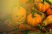 Arranjo para Halloween na luz do sol 1 — Fotografia Stock