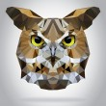 Owl head vector isolated geometric illustration — Stock Vector #54898009
