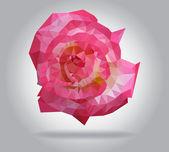 Roze bloem vector geïsoleerde geometrische illustratie — Stockvector