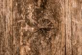 Knotted Wood Background — Stock Photo