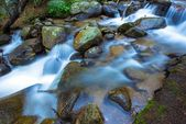 Mountain Rocky Stream — Stock Photo