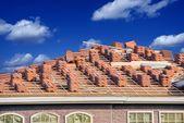 Ceramic Roof Slates — Stock Photo