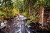 Fiume di montagna del colorado — Foto Stock