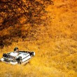 Rollover Crashed Car — Stock Photo #54771605