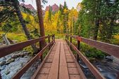 Wooden Trail Bridge — Stockfoto