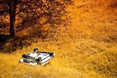 Rollover Crashed Car — Stock Photo