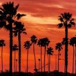 California Sanset Scenery — Stock Photo #62103829