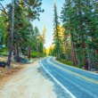 Highway Through Sierra Nevada — Stock Photo #63786437