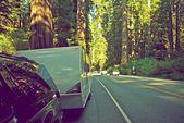 Rv в лесу красного дерева — Стоковое фото