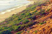 California Ocean Shore — Stock Photo