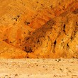 Постер, плакат: Raw Death Valley Badlands