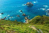 Ocean Shore Coastal California — Stock Photo