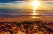 Sunny California Beach — Stock Photo